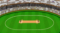 cricket game